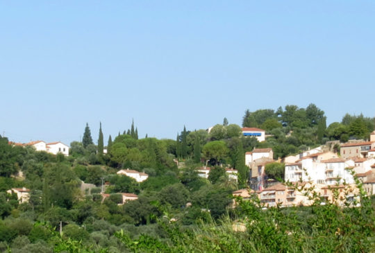 Panoramique x